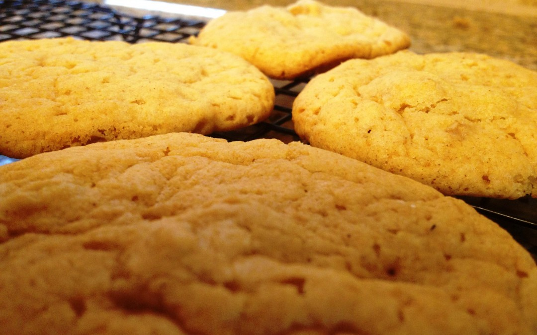 Jenna's Maple Cookies